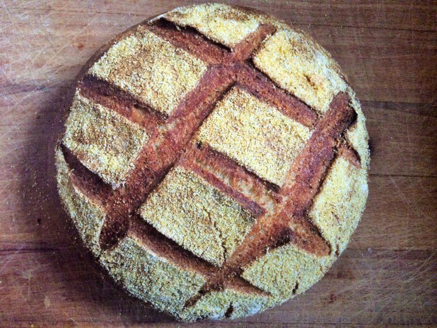 Pão de Polenta, Parmesão e Ervas